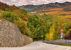 Väg och höstliga träd i Piedmont, Italien Royaltyfri Foto