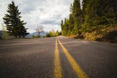 Väg- och skogsikt på glaciärnationalparken i Montana Royaltyfri Bild