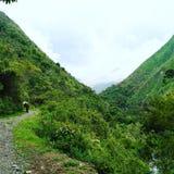 Väg på bergen Fotografering för Bildbyråer