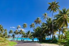 Väg på Bora Bora Arkivfoto