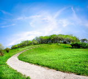 Väg på en grön kulle Fotografering för Bildbyråer