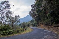 Väg San Gerado de Dota, Costa Rica Royaltyfria Bilder
