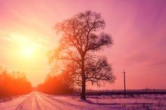 Väg som täckas med snö på solnedgången arkivbilder