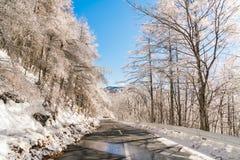 Väg till berget i vintern (Japan) Royaltyfri Bild