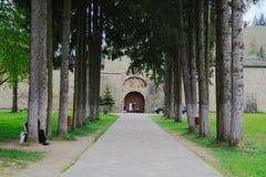 Väg till den klosterSucevita Rumänien bucovinaen arkivbild