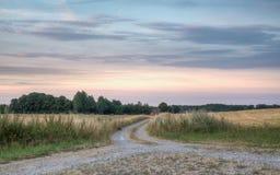 Väg till en lantgård Fotografering för Bildbyråer