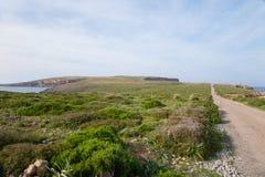 Väg till fyren av udde Cavalleria i Menorca Arkivbilder