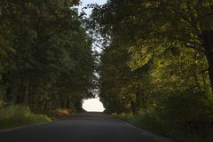 Väg till himmel i trä med solstrålar Arkivfoton