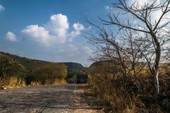Väg till nationalparken Arkivfoto