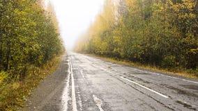 Väg till och med den dimmiga höstskogen Arkivbild
