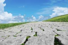 väg till och med fält för grönt gräs mot blå himmel Royaltyfri Foto
