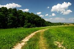 Väg till och med fälten, lantligt landskap för sommar Arkivbild
