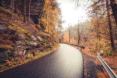 Väg till och med höstlig skog Arkivfoton