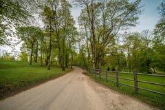 Väg till och med skog i Litauen royaltyfri bild