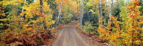 Väg till och med skogen arkivbilder