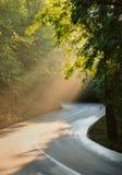 Väg till och med skogen med strålar av ljus Royaltyfri Foto