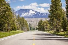Väg till och med skogen, raksträcka till bergen Royaltyfria Bilder