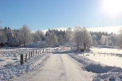 Väg till och med snöig vinterlandskap Arkivfoton