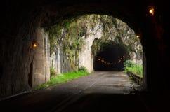 Väg till och med tunnelen, madeira Royaltyfria Foton