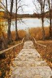 Väg till sjön royaltyfri fotografi