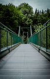 Väg till skogen Arkivbild