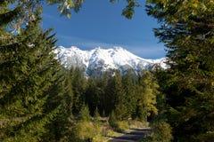 Väg till snöig berg, vrchy Cervene, västra Carpathians, Slovakien Royaltyfri Bild