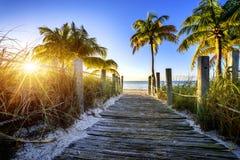 Väg till stranden Arkivbilder