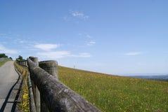 Väg upp Garthen, södra Wales Arkivfoton
