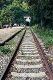 Väg Zhleznaja till Abchazien Station Psyrtsha Royaltyfria Bilder
