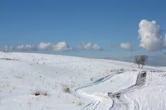 Vägar bland snöig kullar och två ensamma träd Fotografering för Bildbyråer
