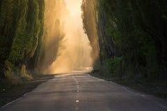 Vägen är tyst rök perspektiv royaltyfri fotografi