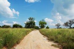Vägen bland fältet Arkivfoto