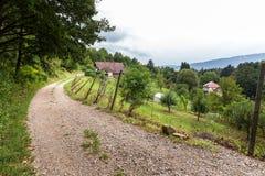 Vägen för det Maribor förortlandet arbeta i trädgården byhus, Slovenien na Royaltyfri Fotografi