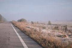 Vägen går in i avståndet in i dimman Rimfrost på gräs royaltyfri bild