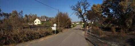 Vägen går till och med brända träd och skördar som orsakas av skogsbränder - stora Pedrogao Arkivbilder
