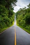 Vägen i den Khaoyai internationalen parkerar Arkivfoton