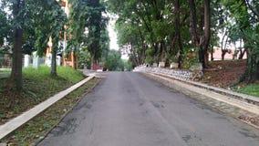 Vägen i eftermiddag fotografering för bildbyråer