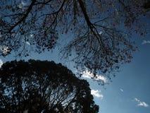Vägen i himmel Arkivbild