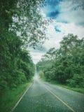 Vägen i natur Arkivbild