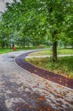 Vägen i parkera Arkivbilder
