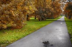 Vägen i parkera Arkivfoton