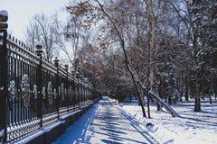 vägen i parkerar exponerat av solen under snön royaltyfri bild