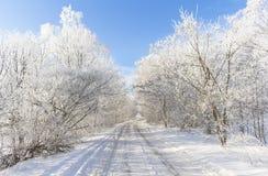 Vägen i snön Arkivbild