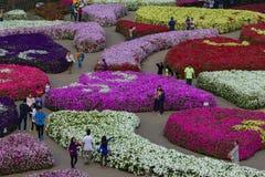 Vägen i trädgård av flora parkerar Arkivbild