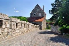 Vägen längs slotten i den Budapest Ungern Arkivbild