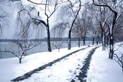 Vägen med snöfall fotografering för bildbyråer