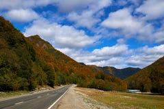 Vägen och floden på bakgrunden av guling-gräsplan berg och blå himmel royaltyfria foton