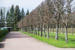 Vägen parkerar offentligt royaltyfri fotografi