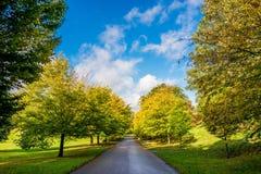Vägen parkerar sunnny dag Royaltyfria Bilder
