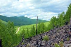 Vägen passerar mellan de gröna kullarna arkivfoto